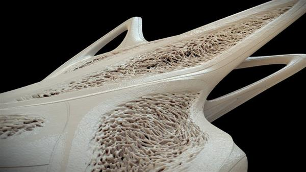 Australian Design and drafting Services Architect developed a stunning 3D printing models 8